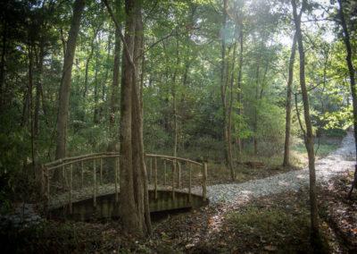 walk-bridge