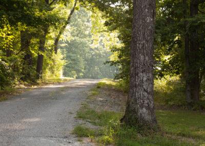 woodland-aug2013-43