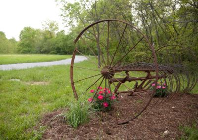 woodland-may2013-56